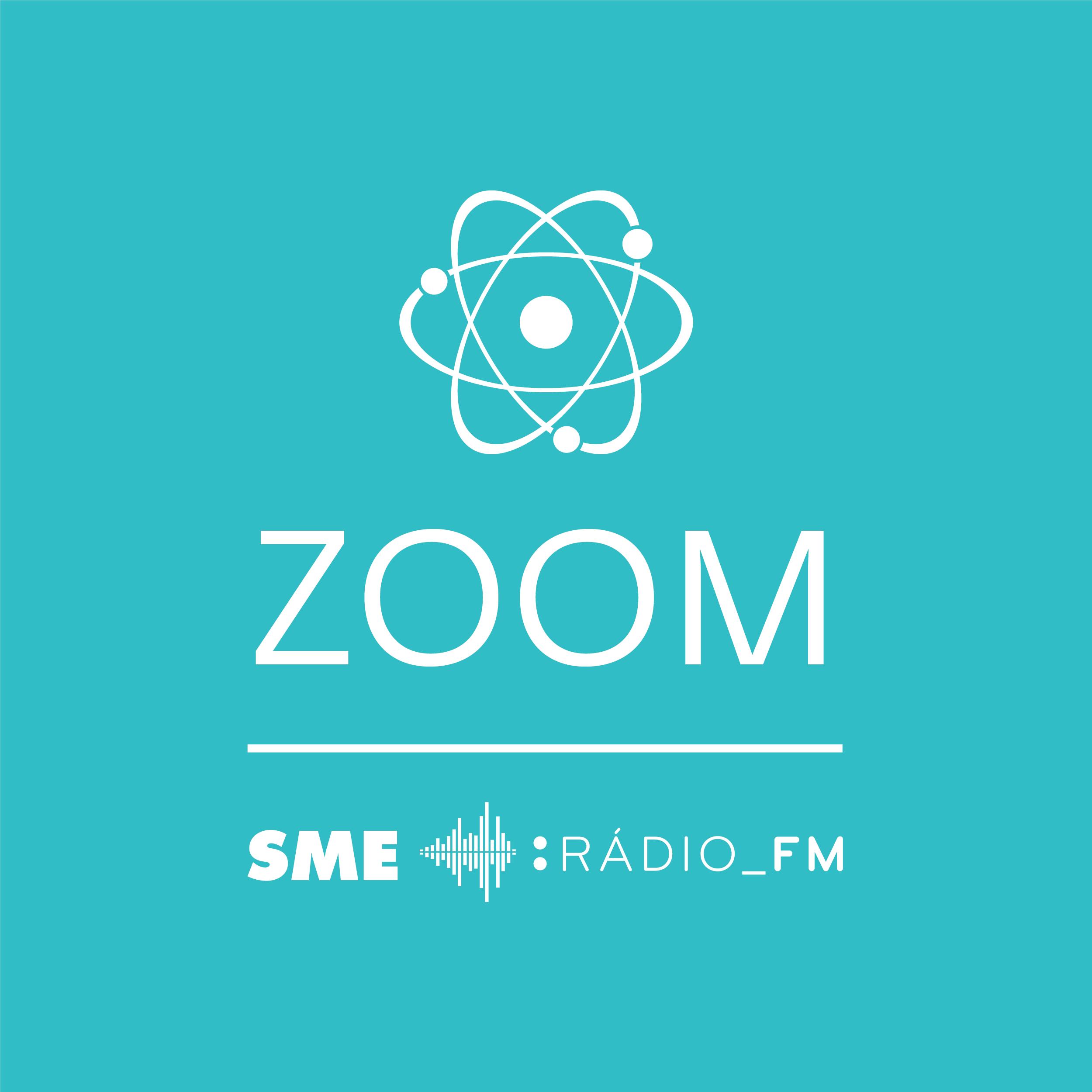 Zoom: Vedci ukázali, čo môže spôsobovať autizmus