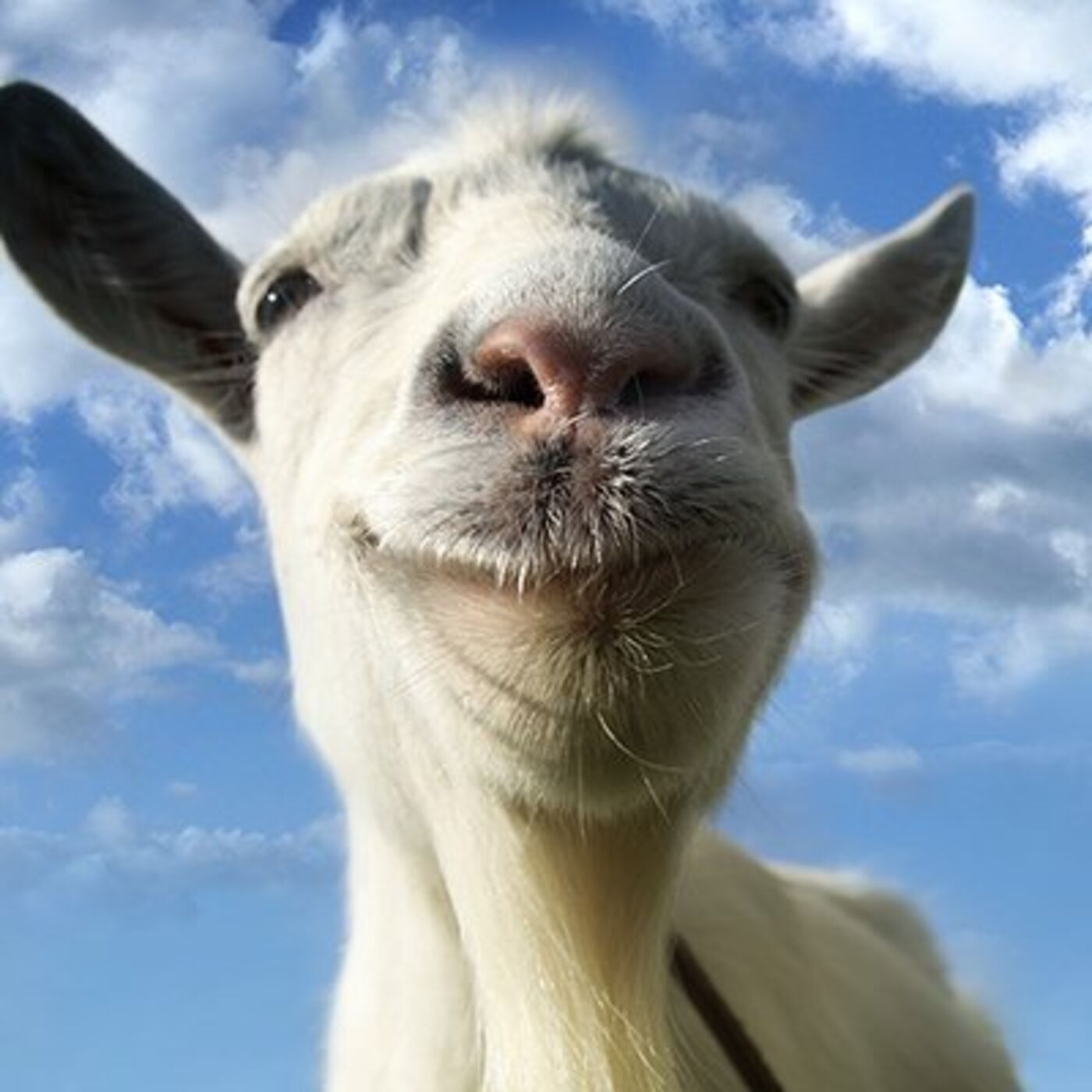 After the Meme is Gone: Playing Goat Simulator in the Year 2020