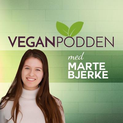 Martin Skadal - foredrag på Green Food Fest