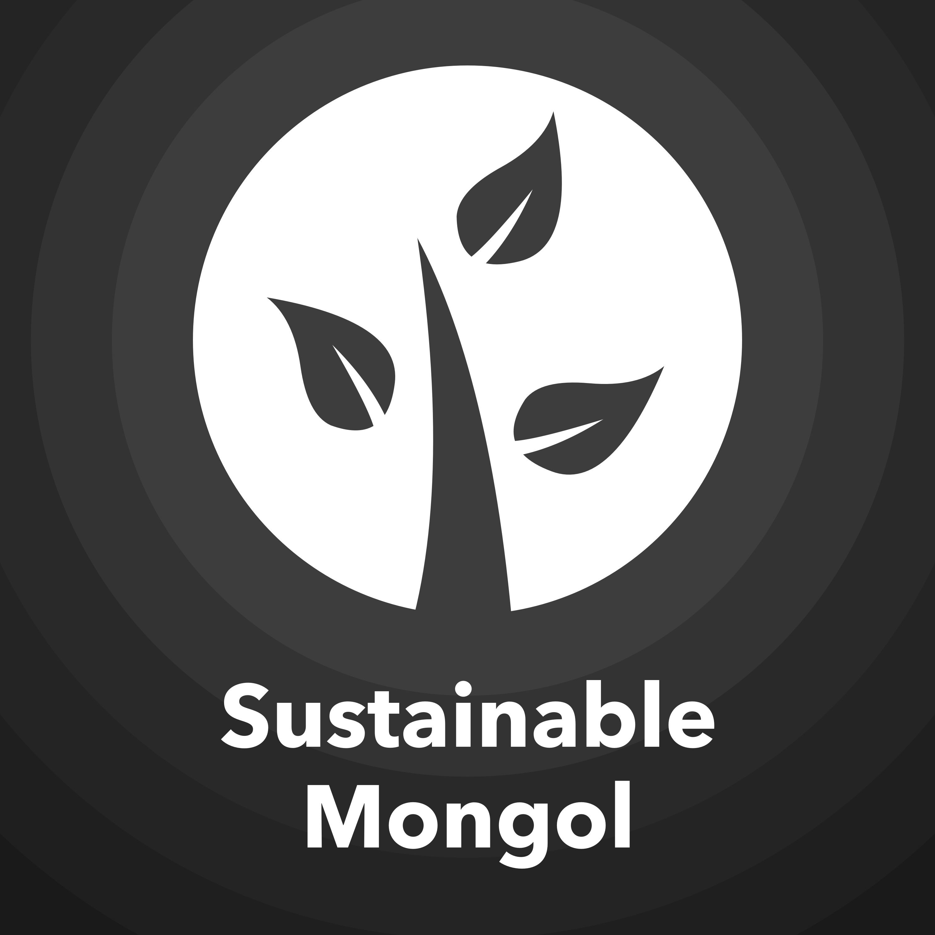 Sustainable Mongol