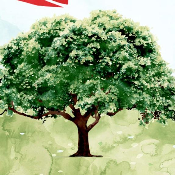 Portakal Ağacı Kitap & Kahve; Fatih-Harbiye Romanı